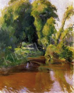 Benkhard Ágost - Vízpart fákkal