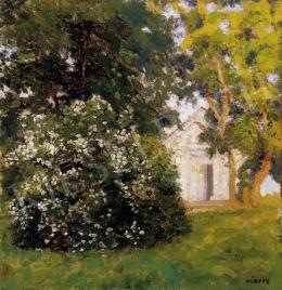 Kunffy, Lajos - Afternoon lights in my garden