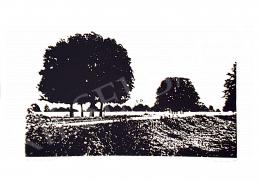 Bodor Anikó - A négylábú fa, 1995