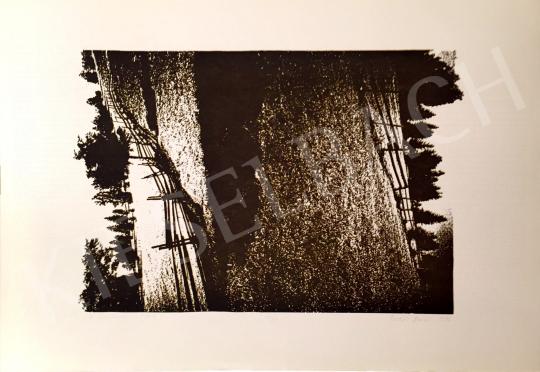 Eladó Bodor Anikó - A repedésről, 1996 festménye