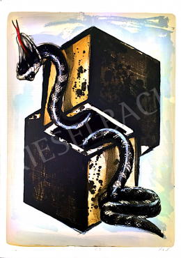 Zsankó László - Kígyó dobozokkal, 2001