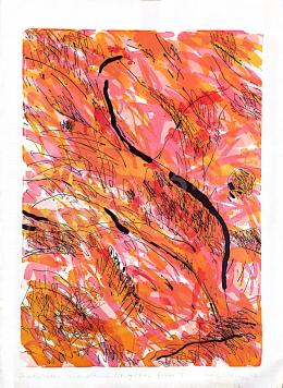 Ismeretlen művész olvashatatlan szignóval - Csodálatos mandarin, 1993