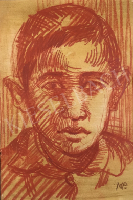 Mizser Pál - Fiú portré