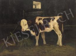 Edvi Illés, Aladár - Cow