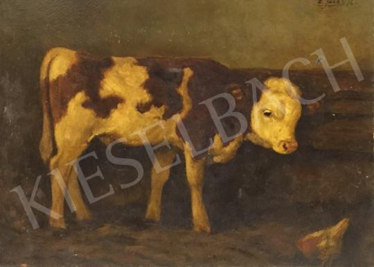Edvi Illés Aladár - Boci festménye