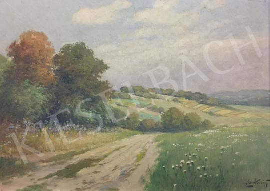 Zorkóczy Gyula - Tájkép festménye
