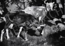 Kieselbach Géza - Kecskék, 1913-1918