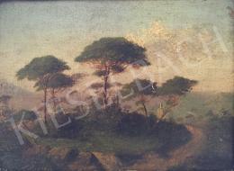 Ismeretlen festő - Tájkép