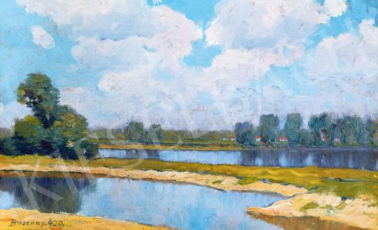 Bosznay István - Csend festménye