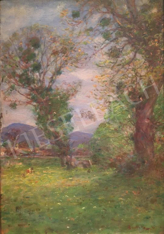 Eladó Ismeretlen festő - Táj festménye