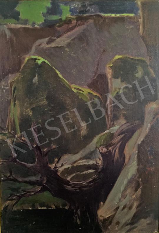 Stein János Gábor - Erdei patak csillogó kövekkel festménye