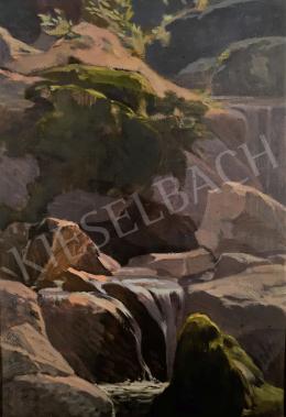 Stein János Gábor - Erdei patakpart sziklákkal