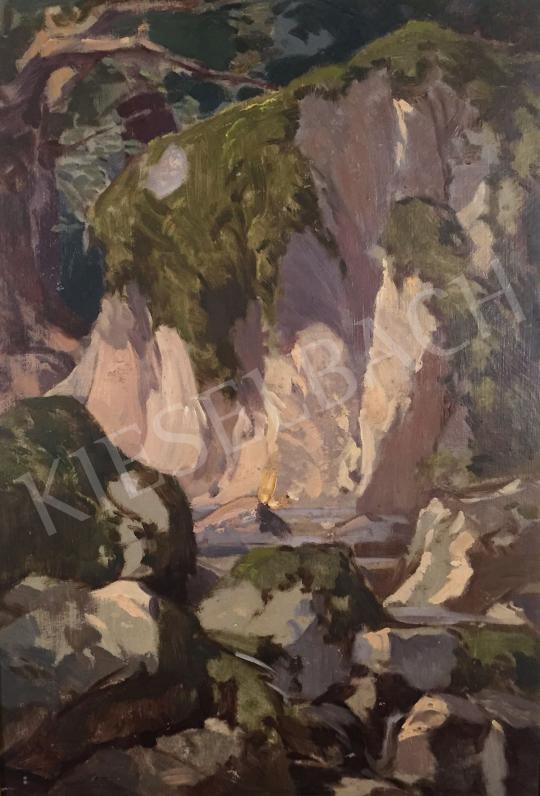 Stein, János Gábor - Canyon painting