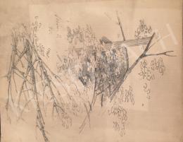Stein, János Gábor - Forest Detail,1895
