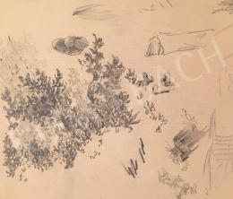 Stein, János Gábor - Forest Detail