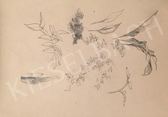 Stein János Gábor - Növényzet festménye