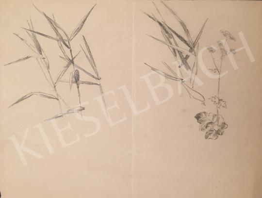 Stein, János Gábor - Reed Detail painting
