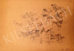 Stein, János Gábor - Tree Line Detail