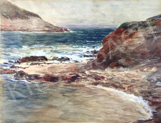 For sale Unknown painter - Coastal Scenery 's painting