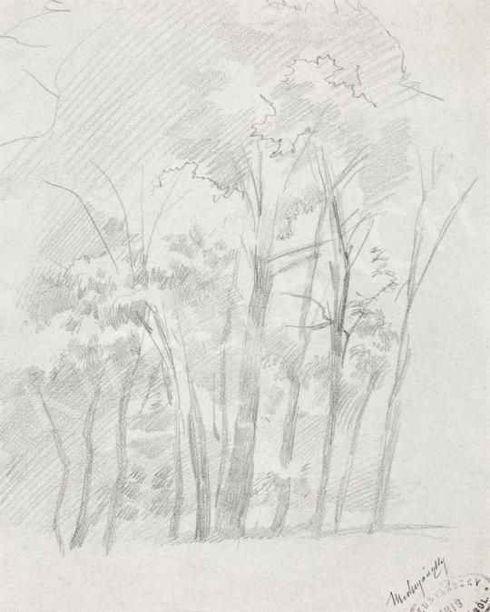 Mednyánszky, László - 19 drawings - Forest | 56th Autumn Auction auction / 192 Item