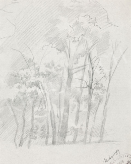 Mednyánszky, László - 19 drawings - Forest