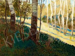 Unknown Hungarian painter, about 1910 - Birch Trees