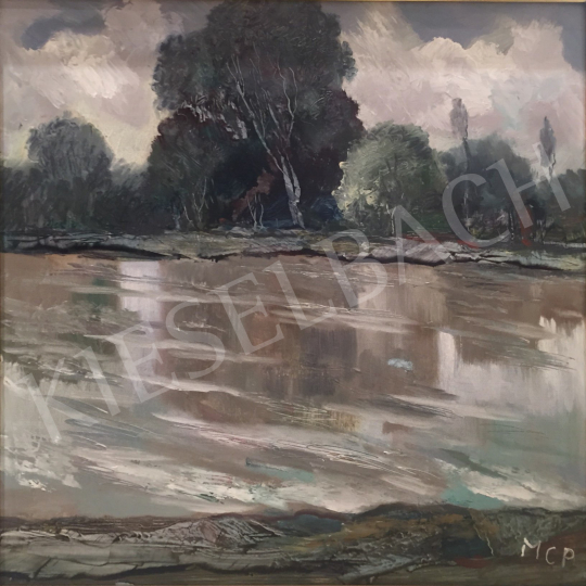 For sale  Molnár C., Pál - Riverside Landscape 's painting
