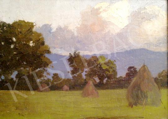 Eladó Papp Aurél - Zöldellő rét szénaboglyákkal festménye