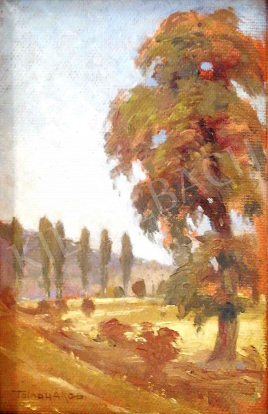 For sale Tolnay, Ákos - Landscape with Poplars 's painting