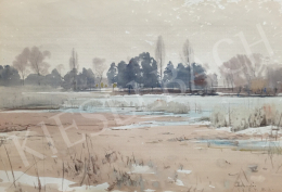 Dobroszláv, Lajos - Swampy Landscape, 1954