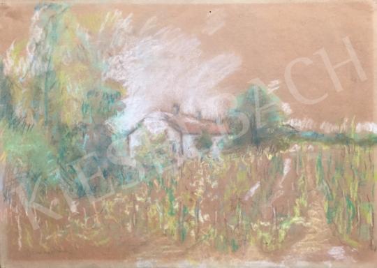 Eladó  Diener-Dénes Rudolf - Rálátásos tájkép házzal és fákkal festménye