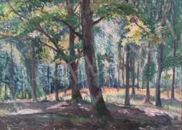 Boldizsár, István - Forest Detail