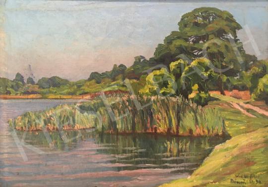 Eladó Widder Félix - Duna mellett, 1932 festménye