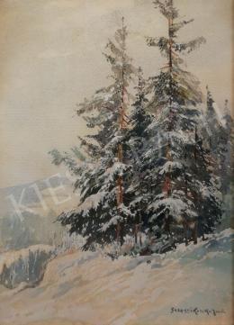 Szepesi Kuszka Jenő - Téli erdőrészlet