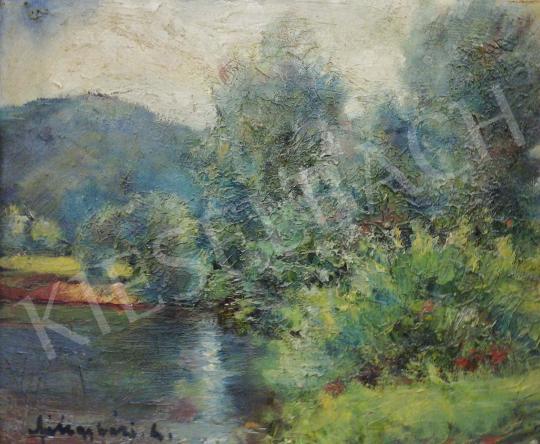 Eladó  Félegyházi László - Tóparti látkép csillanó víztükörrel festménye