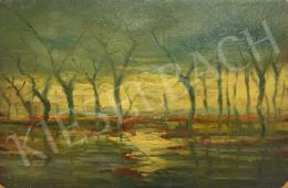 Ismeretlen művész - Ártér fákkal