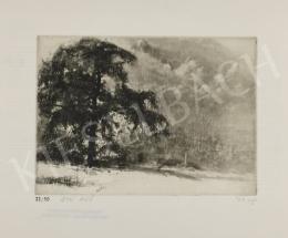 Varga, Nándor Lajos - Autumn Fog