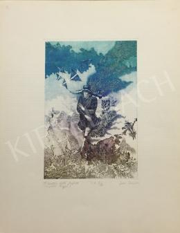 Egresi, Zsuzsa (Egressy Zsuzsa) - Il calaviere delle farfalle, The Knight of Butterflies