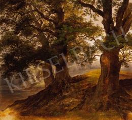 Brodszky Sándor - Fények a fák között
