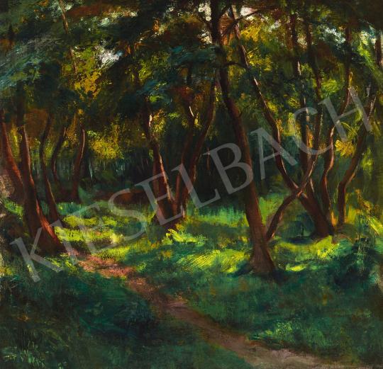 Boldizsár István - Nagybányai park, 1920-as évek vége | 58. Tavaszi Aukció aukció / 9 tétel
