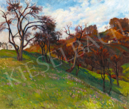Krizsán János - Nagybányai ősz (Kökörcsin mező)