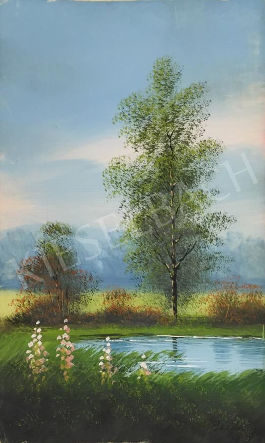 Eladó  Ismeretlen művész Baranyos jelzéssel - Vízparti táj II.  festménye