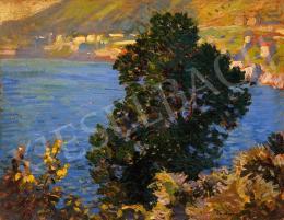 Nyilasy Sándor - Olajfa a tenger partján