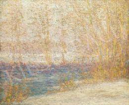 Palmier, Charles J. - Téli hangulat a bajor erdőben, 1905 körül