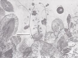 Ruzicskay György - Baudelaire: Romlás virágai
