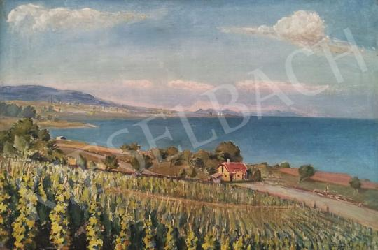 For sale  Tunyogi Szűcs, Sándor - Landscape with the Lake Balaton 's painting