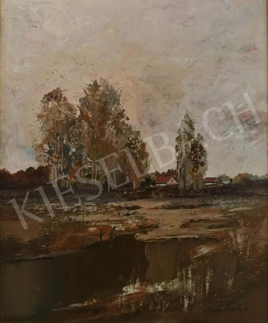 For sale  Szanthoffer, Imre - Landscape with House and Trees 's painting