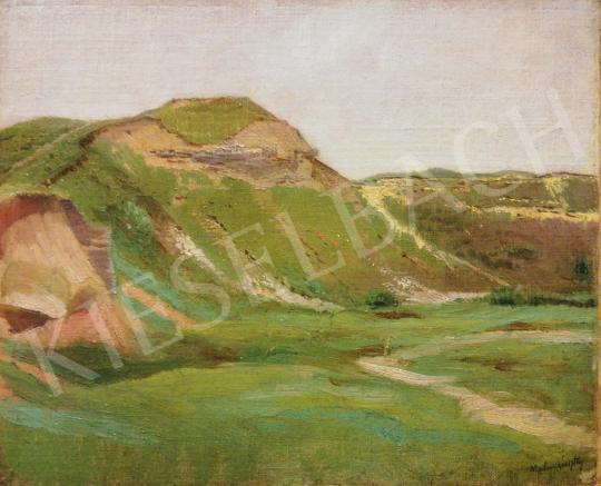 Eladó Mednyánszky László - Hegyvidéki domboldal festménye
