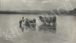 Szőllősy, Kálmán - Bathing, cca. 1938