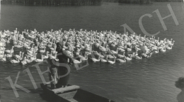 Szőllősy Kálmán - Kacsaúsztató, 1960 körül